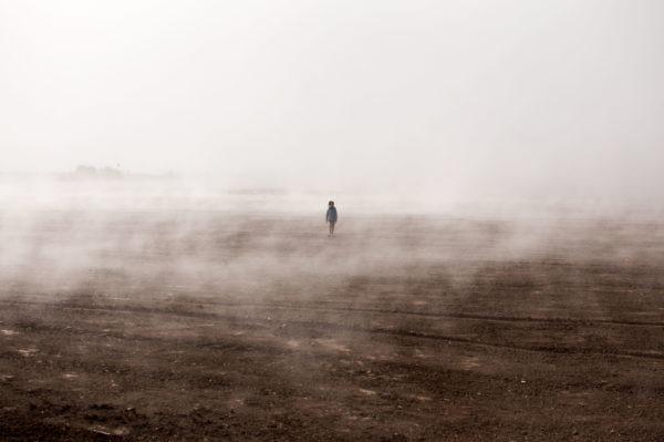 Kleinkrawallo im Nebel - Ferne