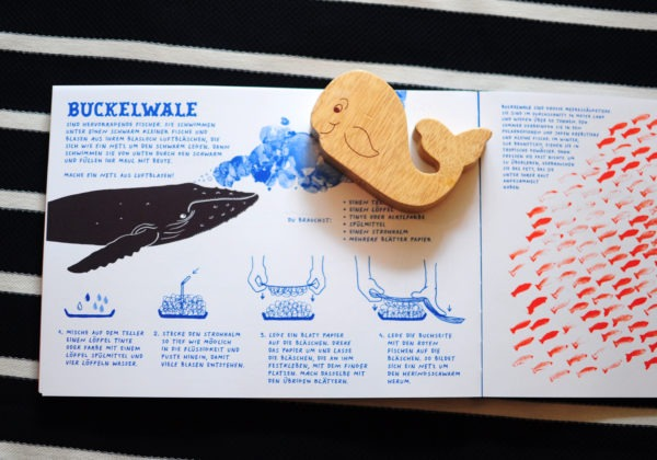 Kinderbuch: Meer - Wale